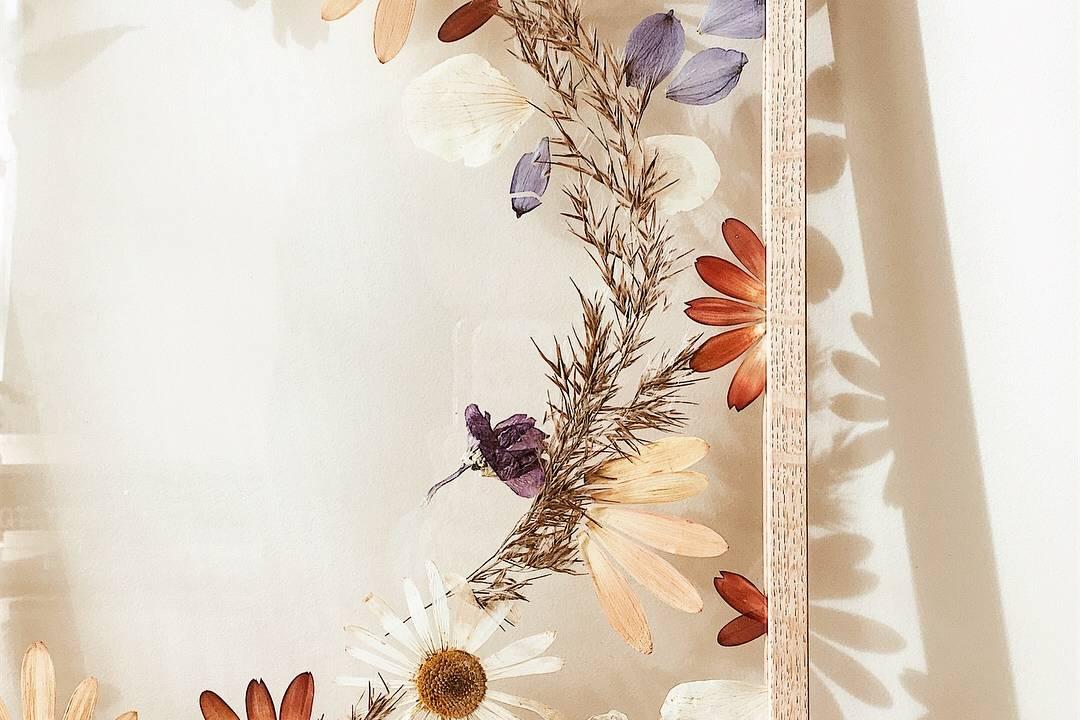 Bonny V-Blumen-Blumenrahmen-Blütenpressen-Australien