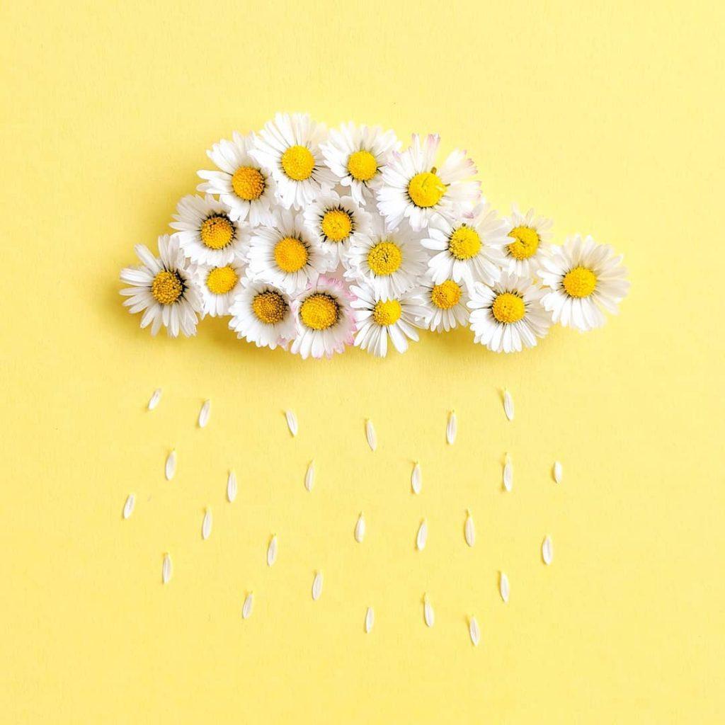 Golden Freckles-Illustration-Postkarten-drawing