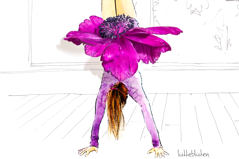 Luetteblueten-Illustriation-Blüten